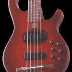 Citron AE5fretless