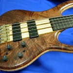 #1002 BSR5TNF-CM / Black Tiger Fretless