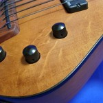 #492 Archtop 6 String Fretless