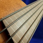 #357 Mark IV 5 String Fretless