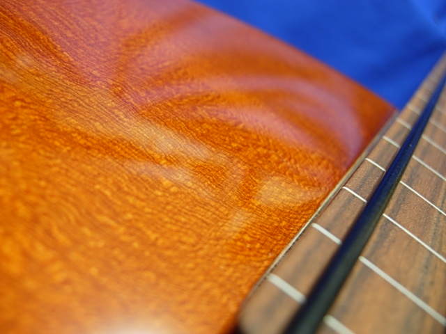 #604 Archtop 4 String Fretless