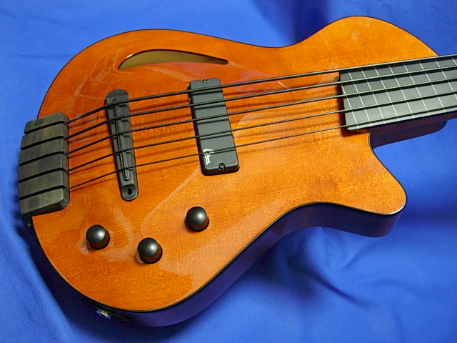 #605 Archtop 5 String Fretless
