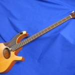 #363 Steve Swallow Signature Model