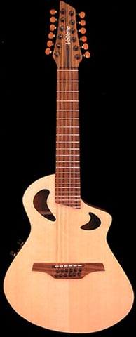 Acoustic Gryphone 12-String