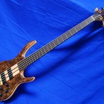 BSR5TNF-CM (Black Tiger Fretless)