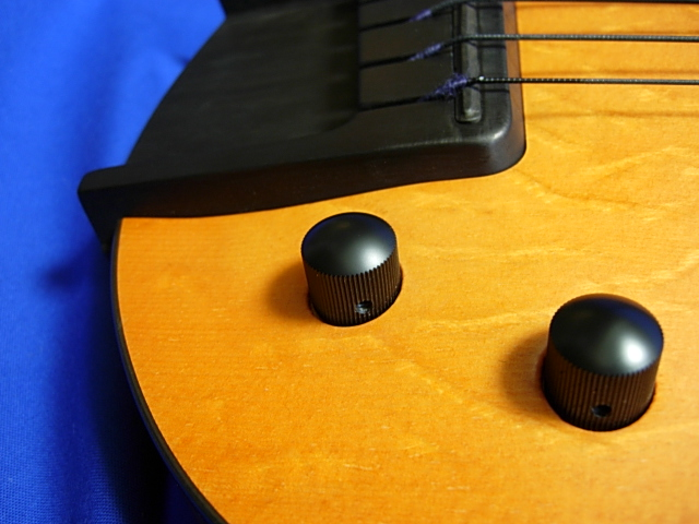 #491 Archtop 6 String Fretless