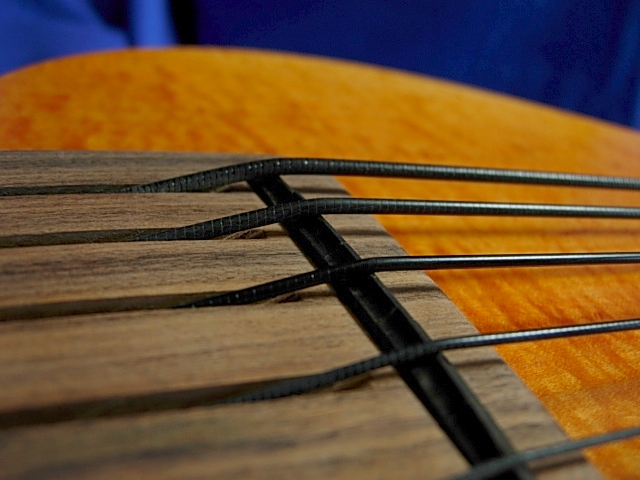 #386 Mark IV 5 String Fretless