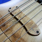 #174 Excellency 5 Spalted Flame Maple
