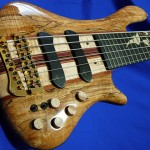 #178 Signature 6 Spalted Maple