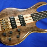 #195 BSR5TNF-CM (Black Tiger Fretless)
