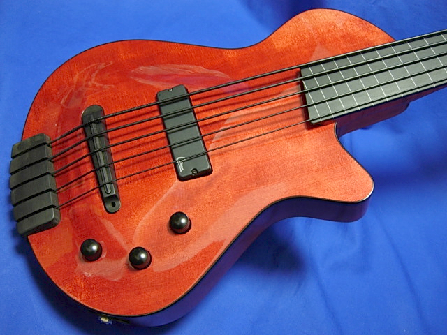 #606 Archtop 5 String Fretless