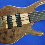 #210 BSR6TNF-CM (Black Tiger Fretless)