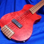 #034 Mark IV 5 String Fretless